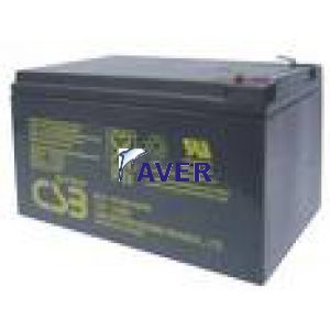 EVX 12120 CSB 12Ah 12,0V